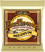 Earthwood 80/20 Acoustic Strings